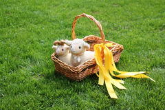 Easter sheeps in a basket on grass Royalty Free Stock Image