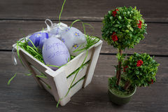 Easter small basket with colored eggs and a small bonsai on grey wooden board. Stock Photos