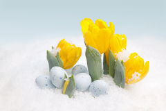 Easter snow Stock Photo