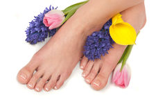 Easter Spa Stock Photography