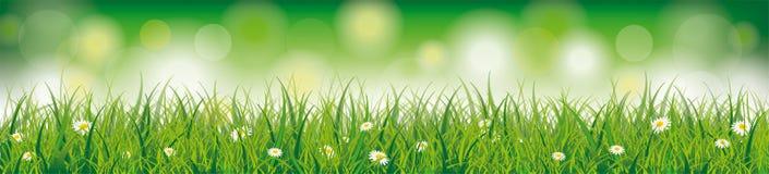 Easter Spring Background Header Stock Image
