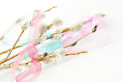 Easter spring background with ribbon Royalty Free Stock Photography