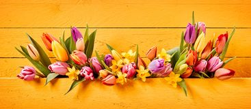Easter or Spring banner with colorful flowers Stock Photo
