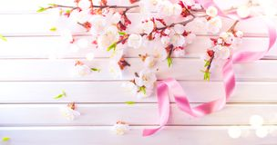 Easter Spring Blossom on white wooden plank background. Easter Apricot flowers on wood border art design. Pink blooming tree. On wood royalty free stock photo
