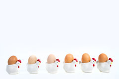 Easter spring chickens Stock Images