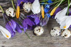 Easter and spring concept Royalty Free Stock Images