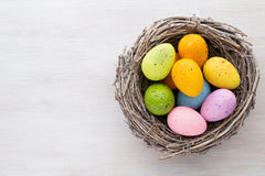 Easter and spring decoration, catkins and eggs. Stock Images