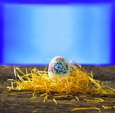 Easter and spring Stock Photos