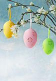 Easter spring eggs Stock Image