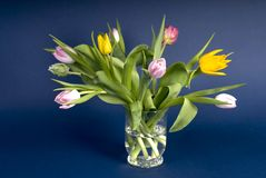 Easter and spring flowers in a bowl. Flowers from spring in al bowl stock photography