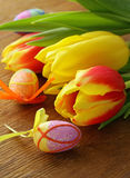 Easter spring flowers tulips Royalty Free Stock Photo