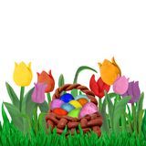 Easter Spring   greeting card template with tulips and grass border isolated. On white Royalty Free Stock Photo