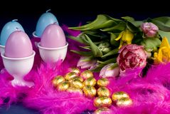 Easter and spring with pink feathers. Easter eggs and flowers from spring, and pink feathers royalty free stock image