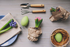 Easter and spring preparations. Hyacinth, eggs and garden tools on table, top view Royalty Free Stock Photography