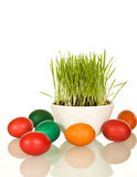 Easter and spring symbols - grass and dyed eggs Royalty Free Stock Photo