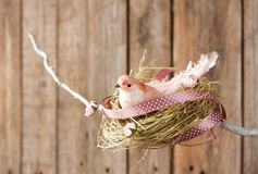 Easter or spring wood background - bird nest on twig Royalty Free Stock Photos