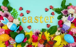 Easter springtime overhead flat lay display of fresh flowers Stock Image