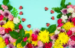 Easter springtime overhead flat lay display of fresh flowers Royalty Free Stock Photography