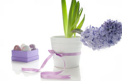 Easter still-life Stock Images