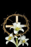 Easter Still Life. Crown of thorns and Easter lilies on wooden cross Royalty Free Stock Photo