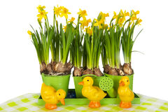 Easter still life Stock Images