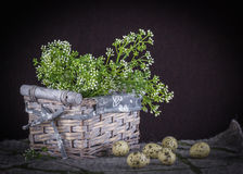Easter Still life with basket, white small flowers, wool and qua stock photo