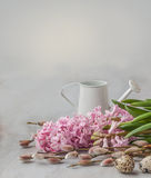 Easter still life with a bunch of willow, hyacinths and quail eg Stock Photography