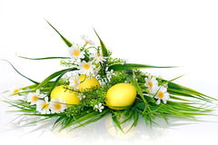 Easter still life with daisies. Photo on the theme of Easter Royalty Free Stock Image