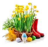 Easter still life from egg and spring Stock Photo