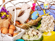Easter still life with eggs and rabbit in basket. Royalty Free Stock Image
