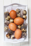 Easter still life with eggs Royalty Free Stock Photo