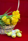 Easter still life of eggs and tulips Royalty Free Stock Photo