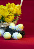 Easter still life of eggs and tulips Stock Image