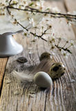 Easter still life with a flowering branch. Stock Photo