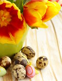 Easter still life with spring flowers tulips and quail eggs Royalty Free Stock Photo