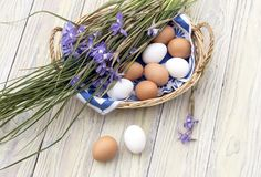 Wild, purple irises and a basket with easter eggs on wooden table. Easter still life. Wild, purple irises and a basket with easter eggs on wooden table in the Royalty Free Stock Images