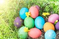 Easter sunday, happy easter, colorful easter eggs hunt holiday decorations easter concept backgrounds with copy space Stock Photos