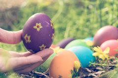 Easter sunday, happy easter, colorful easter eggs hunt holiday decorations easter concept backgrounds with copy space. Gain & noise filter apply Stock Photography