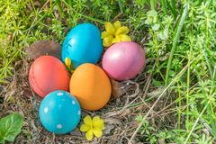 Easter sunday, happy easter, colorful easter eggs hunt holiday decorations easter concept backgrounds with copy space Royalty Free Stock Images