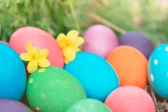 Easter sunday, happy easter, colorful easter eggs hunt holiday decorations easter concept backgrounds with copy space Stock Photo