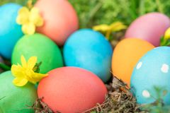 Easter sunday, happy easter, colorful easter eggs hunt holiday decorations easter concept backgrounds with copy space Stock Images