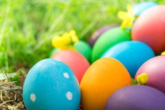 Easter sunday, happy easter, colorful easter eggs hunt holiday decorations easter concept backgrounds with copy space Royalty Free Stock Photo