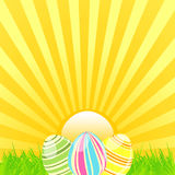 Easter sunshine Stock Photography