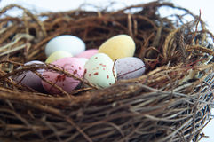 Easter Sweets Nest Cropped Royalty Free Stock Images