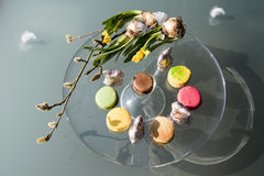 Easter sweets wifth Macarons Royalty Free Stock Photo