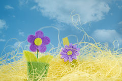 Easter symbol on grass. And sky Royalty Free Stock Photos