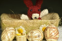Easter. Symbols of Christmas. Rabbit, chicken and eggs. Willow twig Stock Image