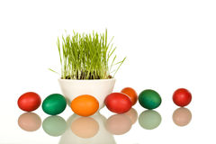 Easter symbols - fresh grass and eggs Stock Photo