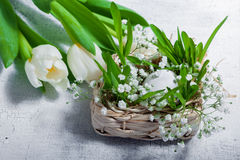 Easter symbols with tulips and eggs. On the table Stock Images
