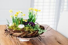 Easter table centerpiece decoration with daffodils and easter eg. Gs arranged in a rustic wreath made of tree twigs Stock Images